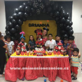 fiesta minnie aeiou