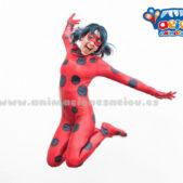 ladybug aeiou copia