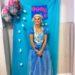 Fiestas de cumpleaños de Frozen