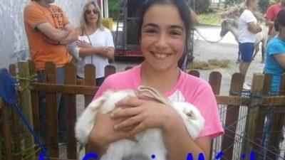 Fiestas infantiles con animales: la granja móvil