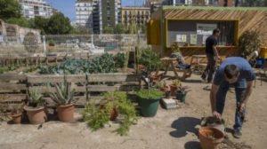 Huertos urbanos para fiestas infantiles en barcelona